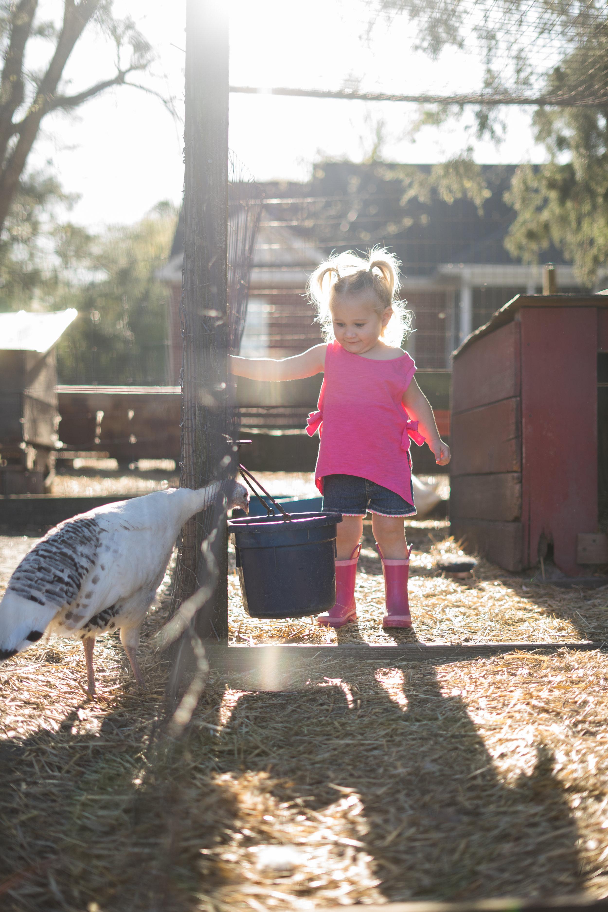 Lifestyle Session At Old Mcfaye S Farm Virginia Gates Photography Wilmington Nc Photographer 910 233 8227