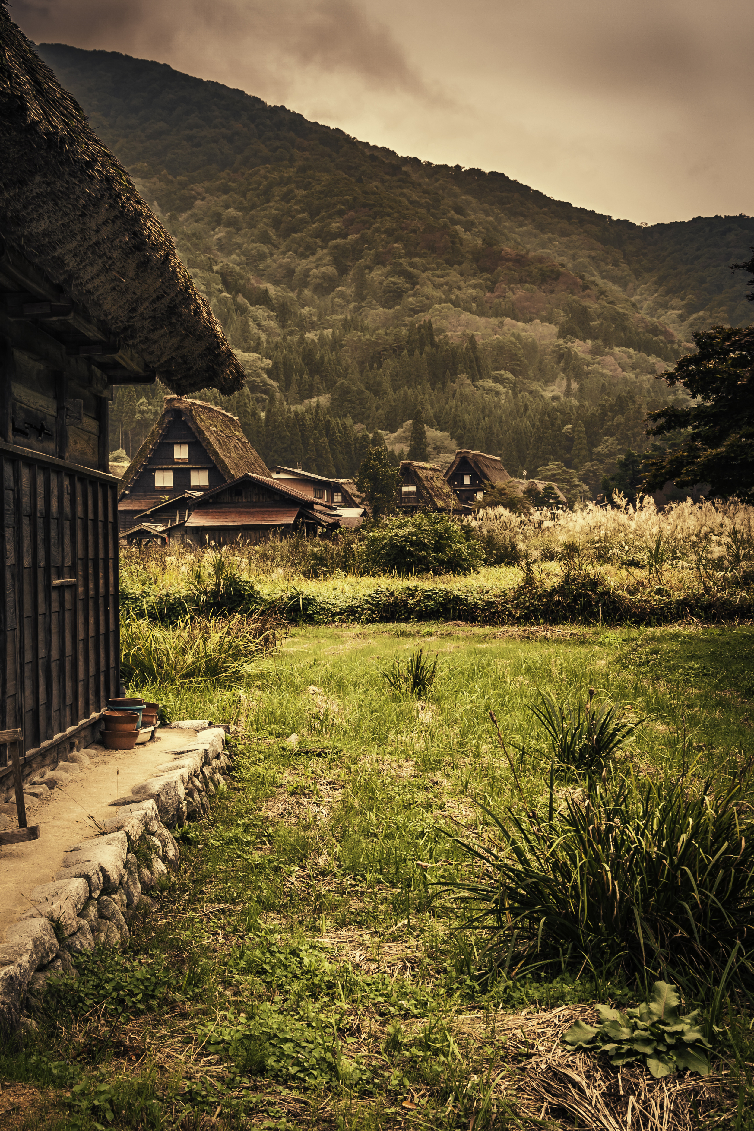 The Gassho-zukuri Houses of Ogimachi Village