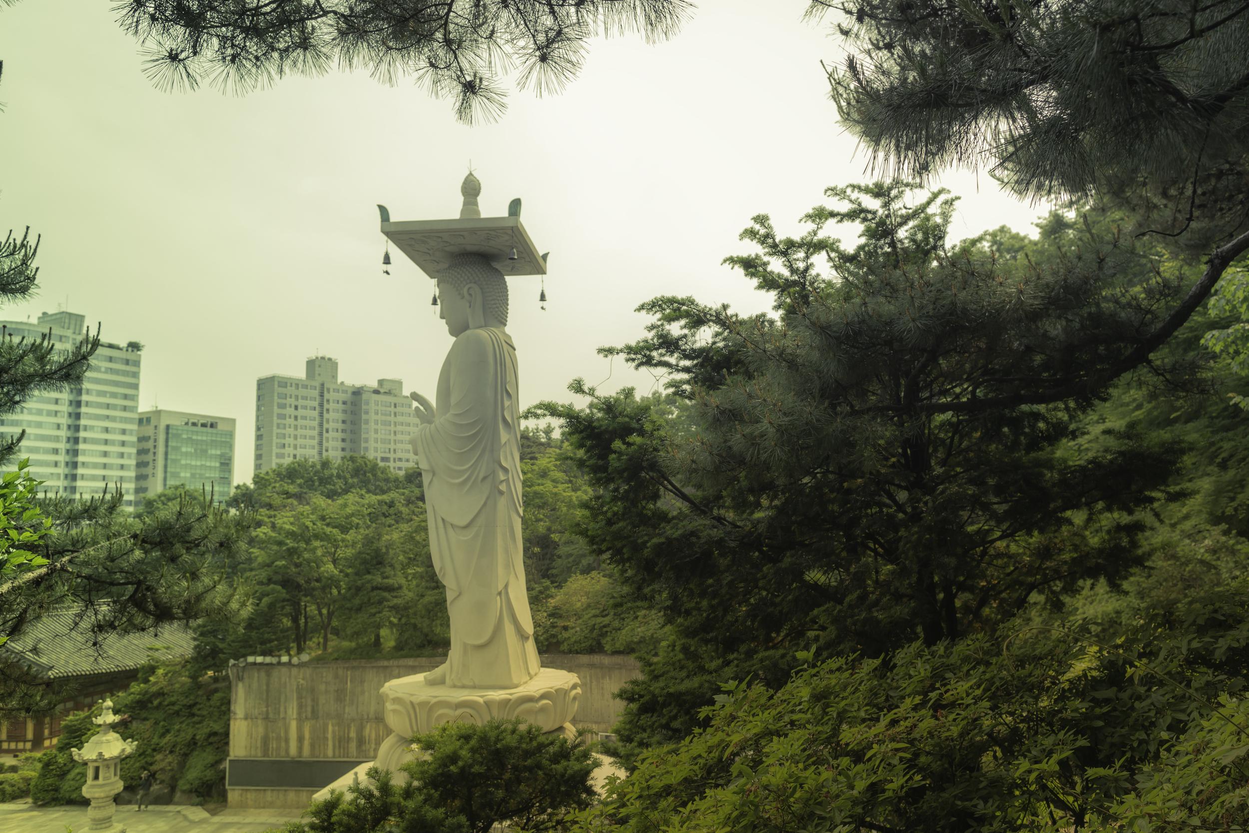The Buddha of Bongeunsa