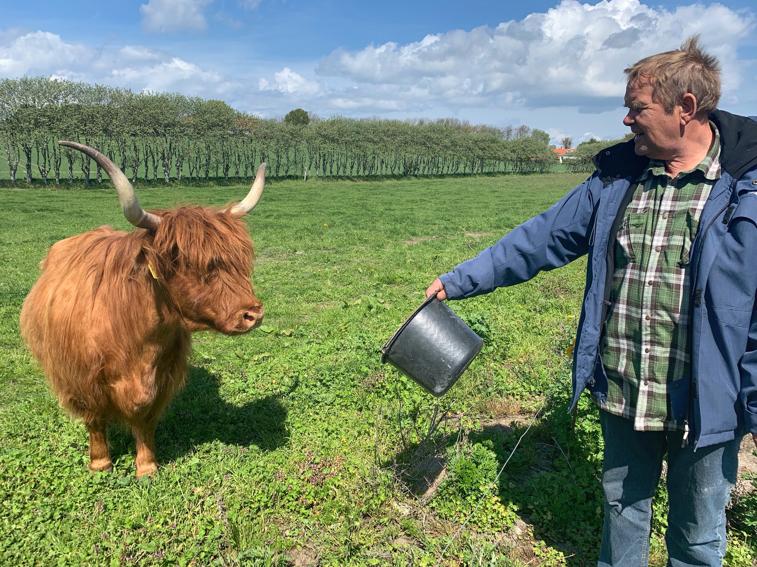 Farmer Jorgen and one of his highland cows.