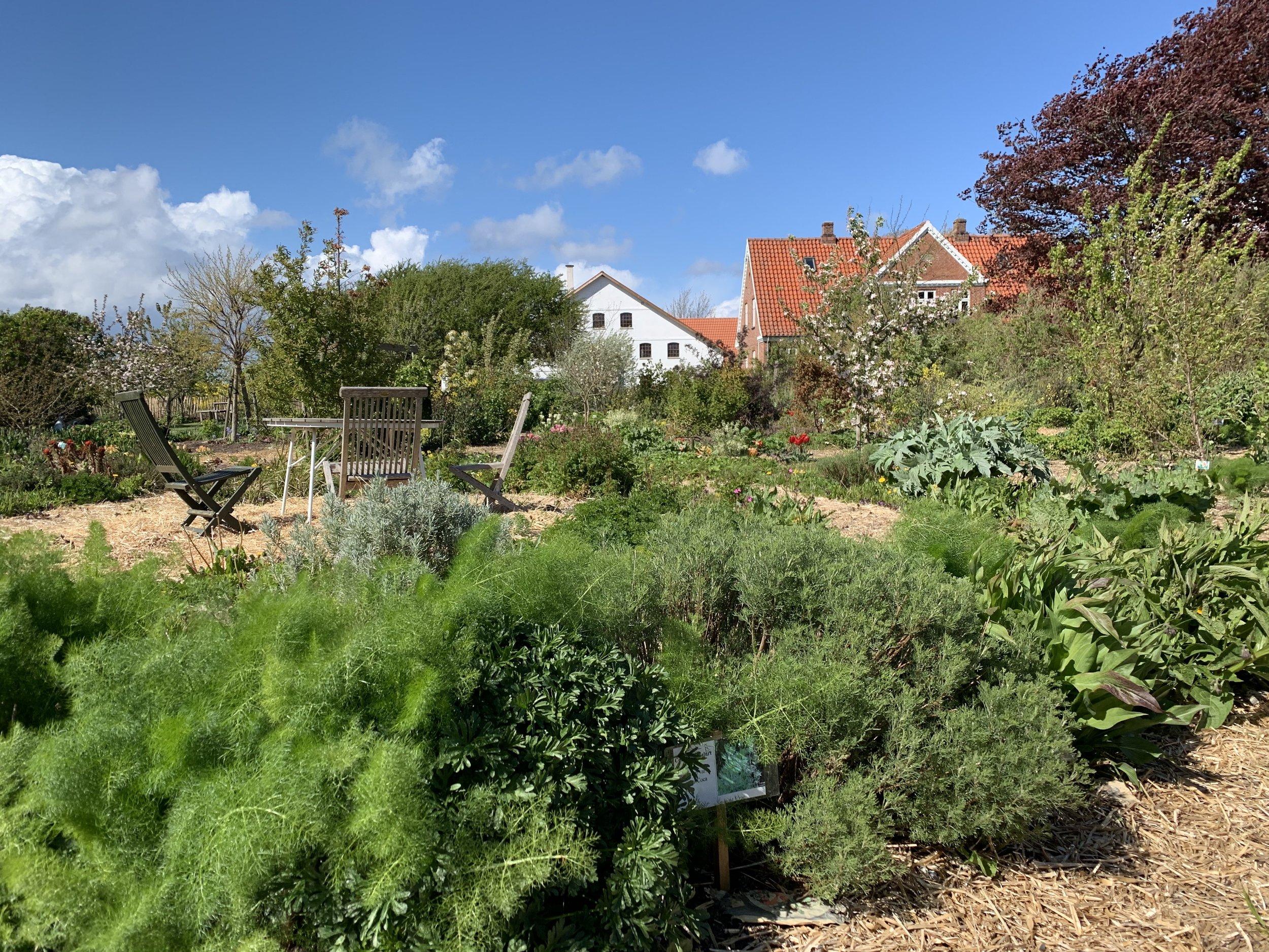 Garden of Artist and Permaculturist, Cecil Rye Olsen