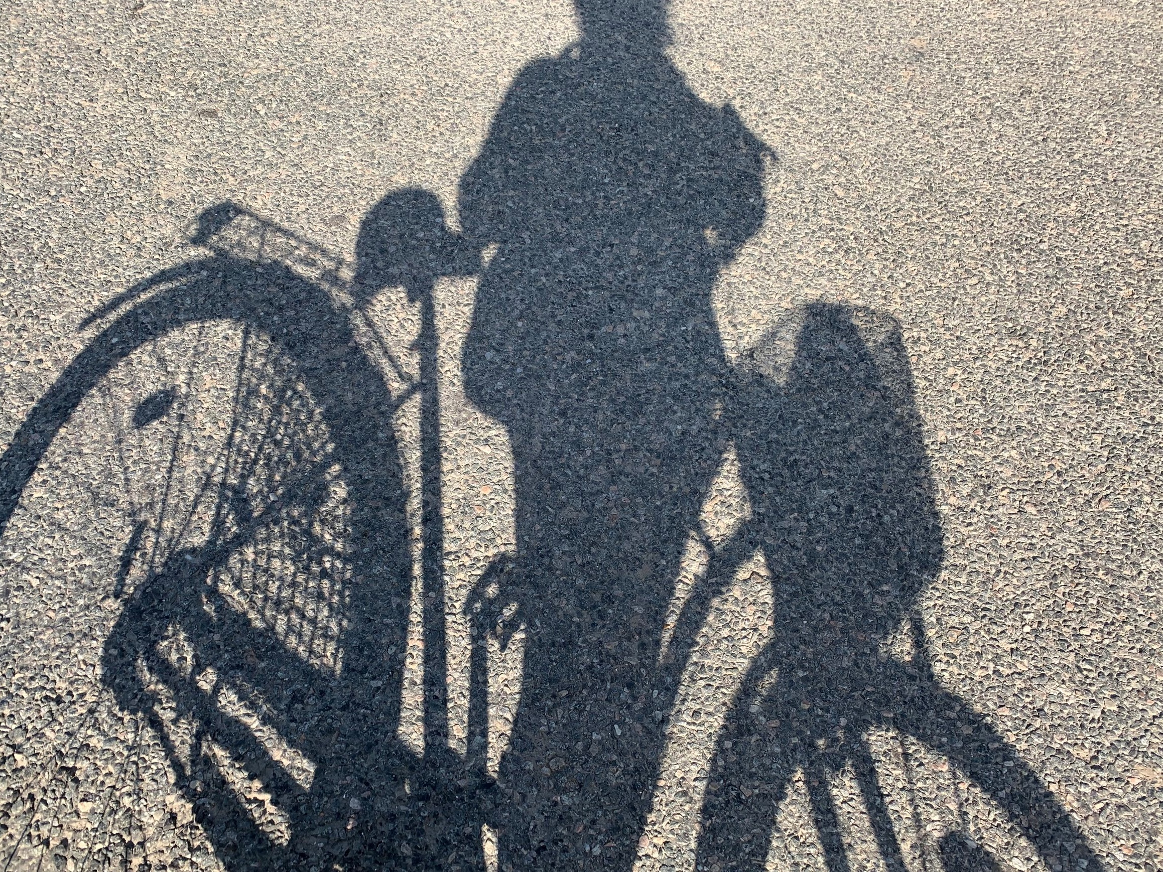 bicycle+shadow.jpg