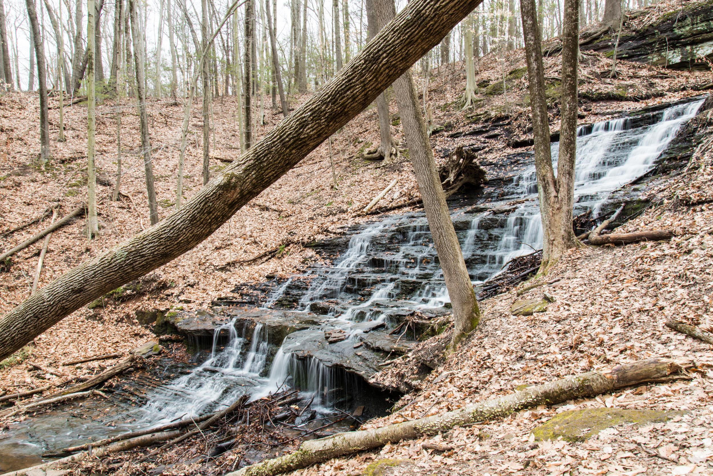 Wadsworth Little Falls