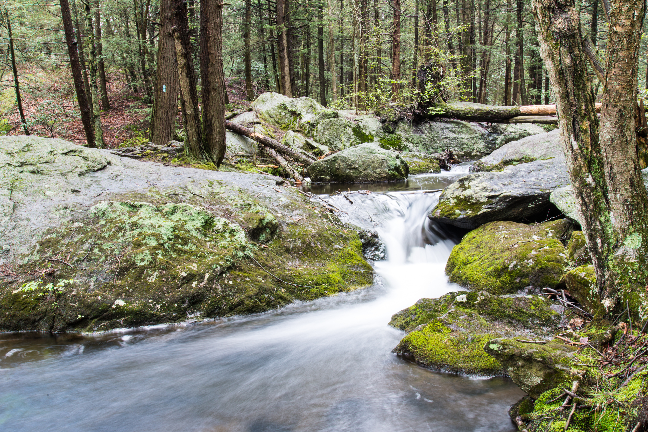Buttermilk Falls 3