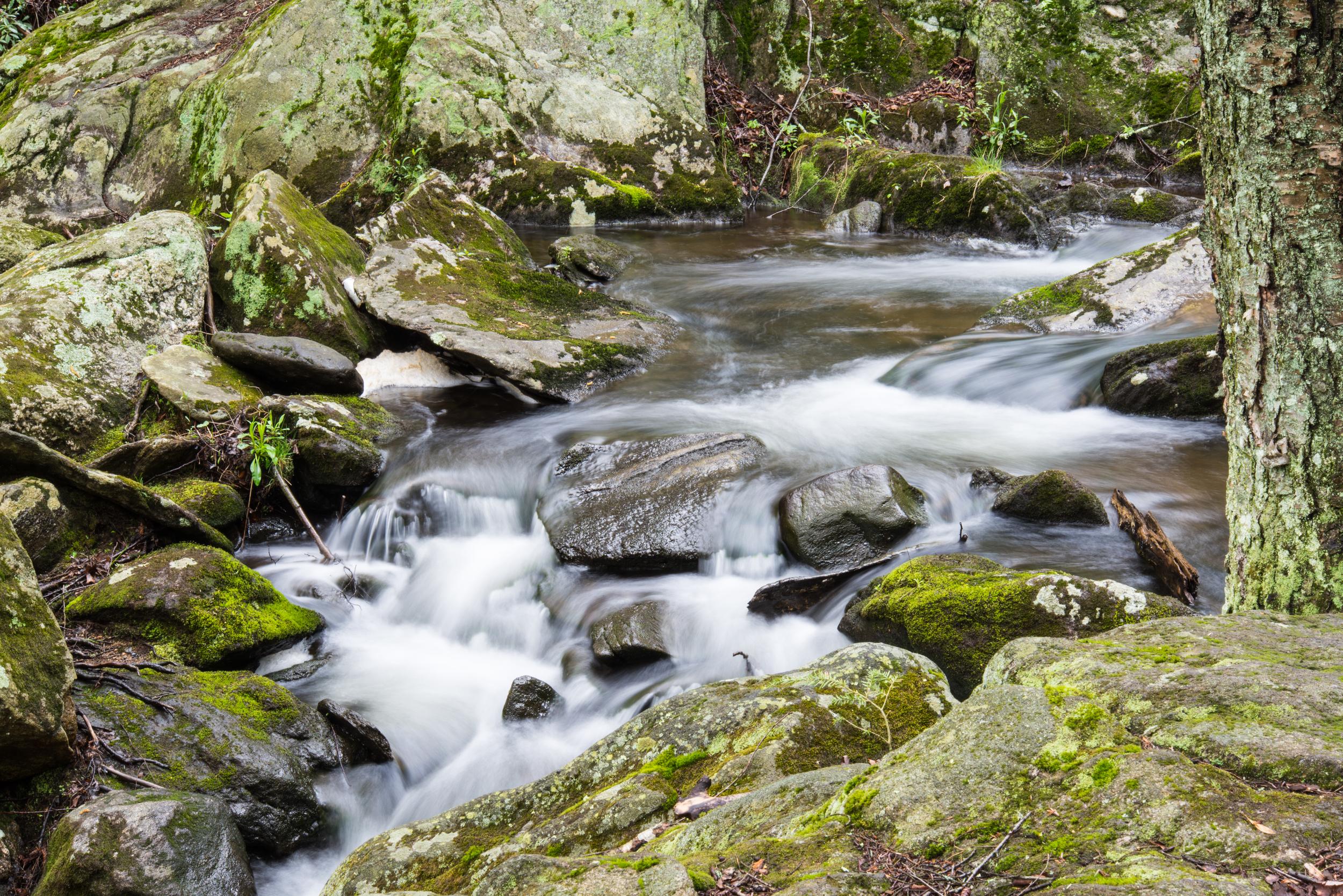 Buttermilk Falls 8