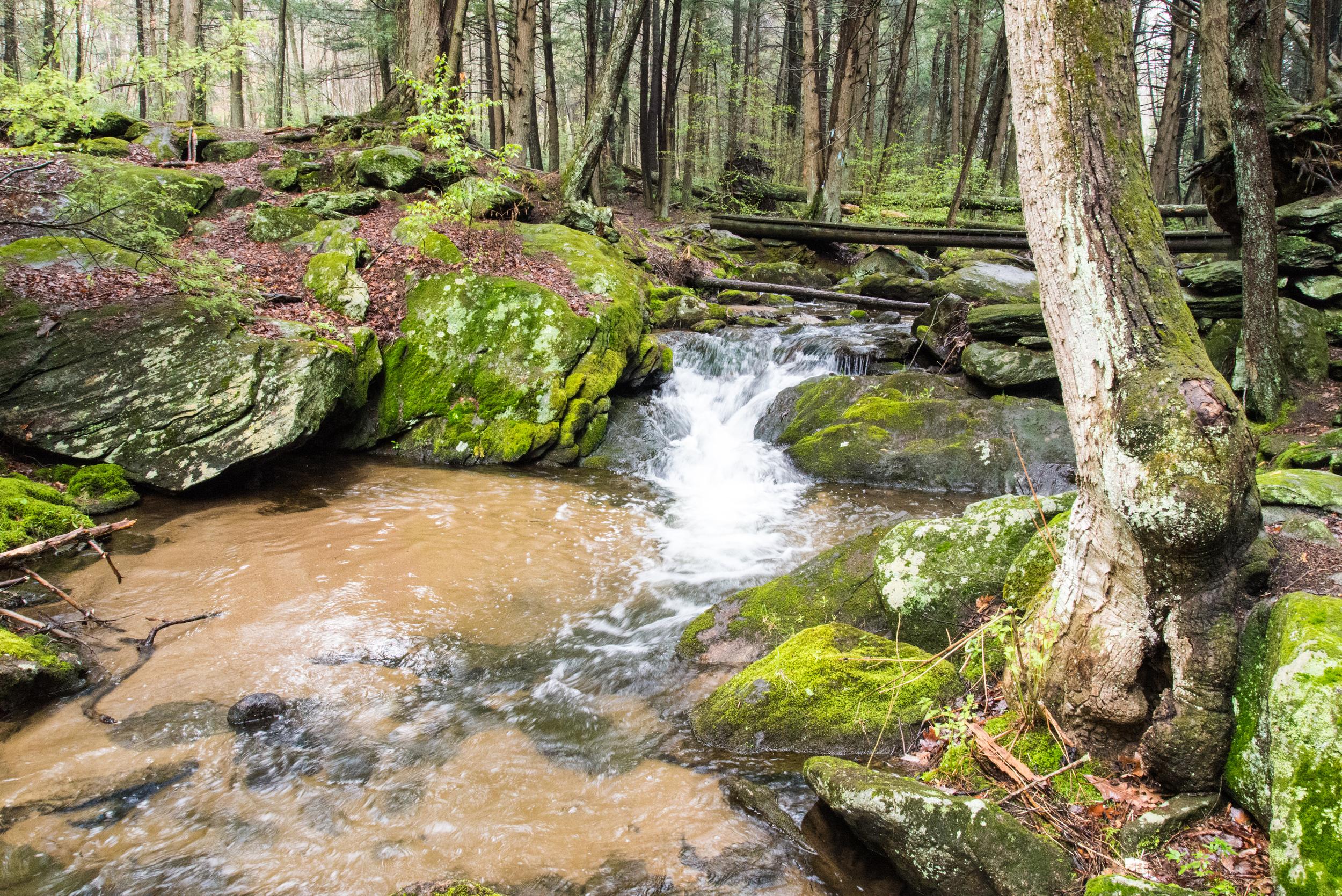 Buttermilk Falls 1