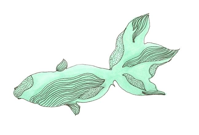 Sea Fish.jpg