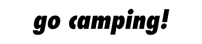 go_camping-italics-divider.jpg