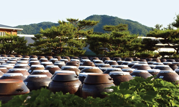 Jangdokdae (Soy Jar Terrace)  - An area outside the kitchen used to store large brown-glazed pottery jars containing soy paste, soy sauce, and chili paste. Korean pottery jars allow for proper ventilation, so they are perfect for preserving fermented food. The ideal location for Jangdokdae would be an area with sufficient sunlight and ventilation.