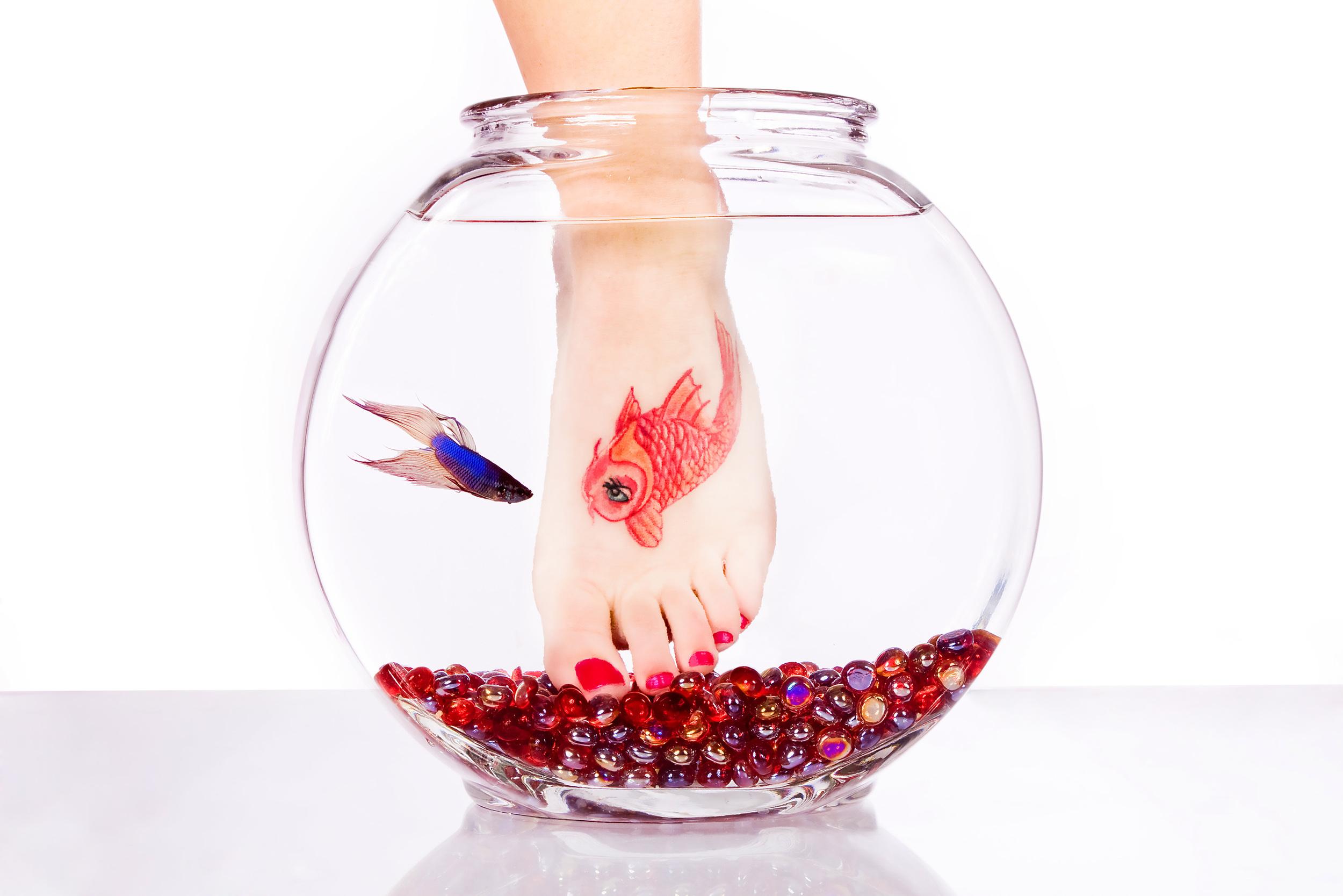 Molly's Fish