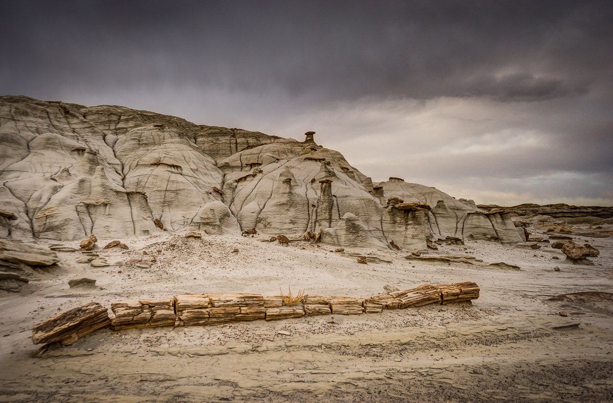 A petrified tree lays in front of an ashy clay and sandstone formation about 20 feet tall.