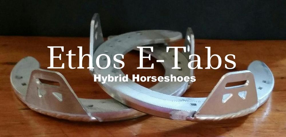EthosEtabsHybridHorseshoes.jpg