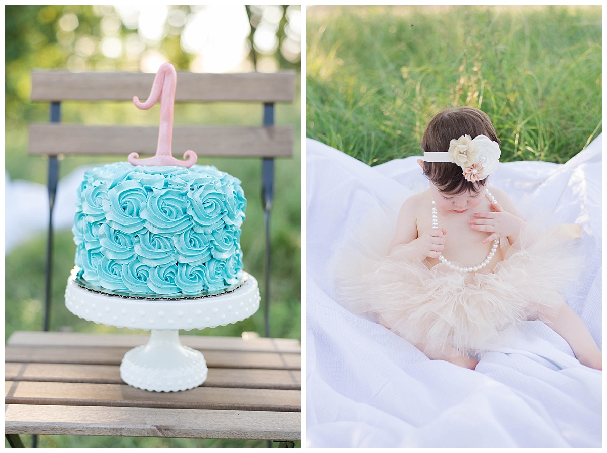 spring texas cake smash photographer