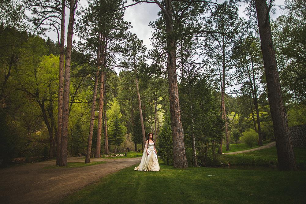 Heather Bobby Dunafon Castle Wedding-0009.jpg