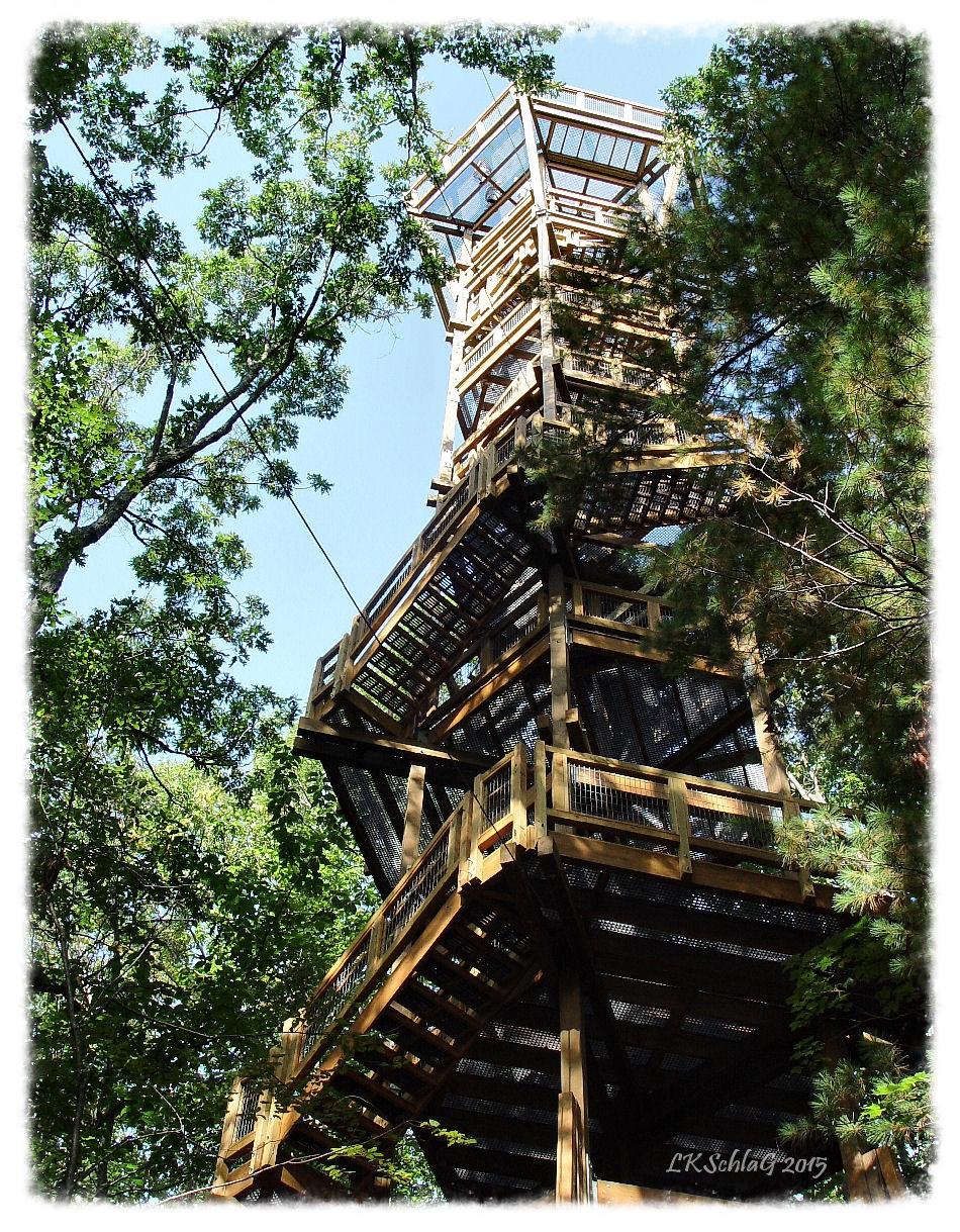Emergent Tower