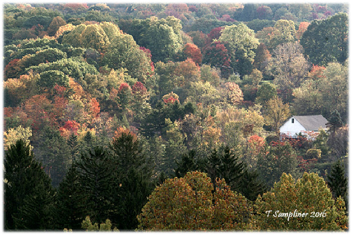 Winter is an etching, spring a watercolor, summer an oil painting, and autumn a mosaic of them all. ~  Stanley Horowitz