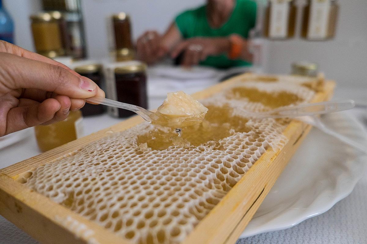 Fresh honeycomb with parmesano reggiano.