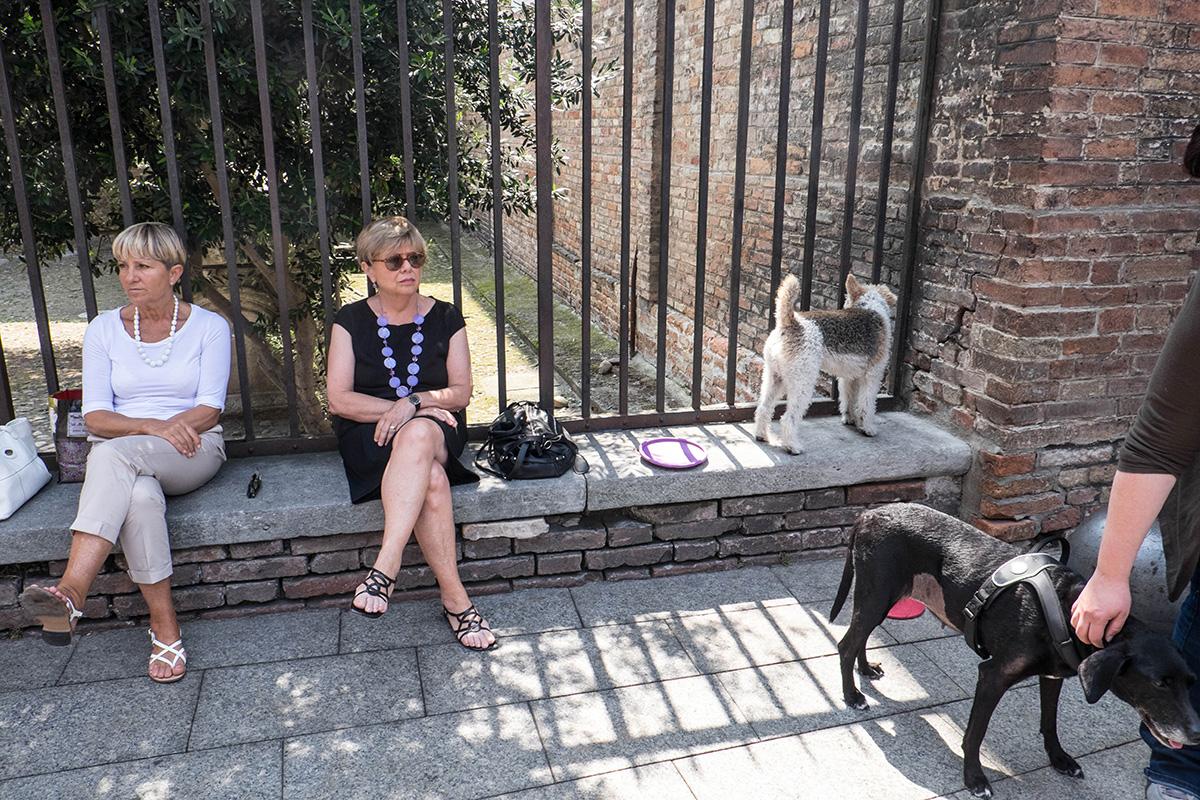 Locals of Bologna.