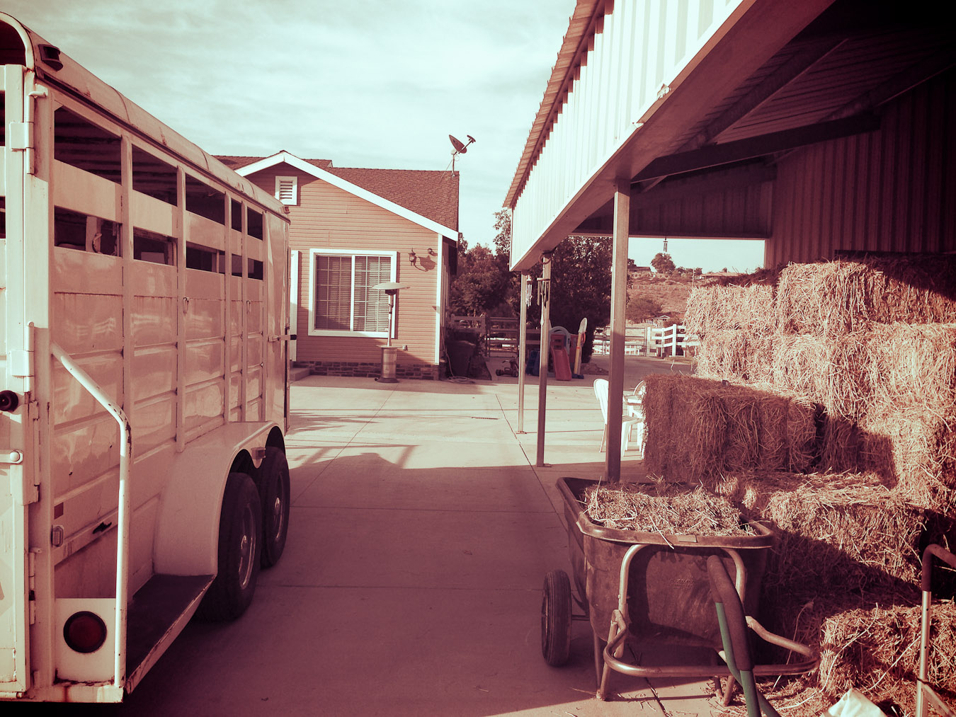 Trailer and Hay