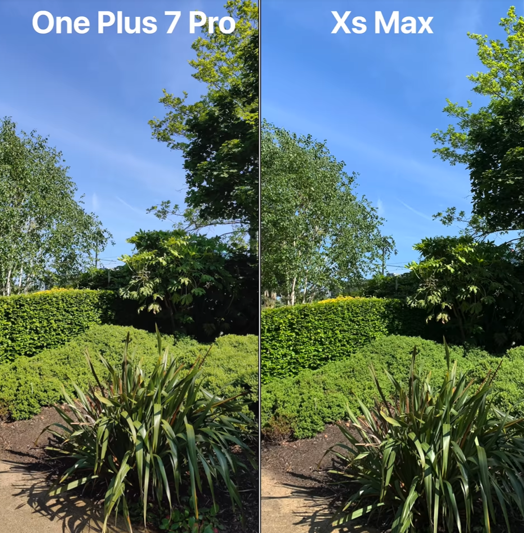 Camera Comparison between the OnePlus 7 Pro and XS Max. Note the lack of definition on the bushes in the OnePlus 7 image