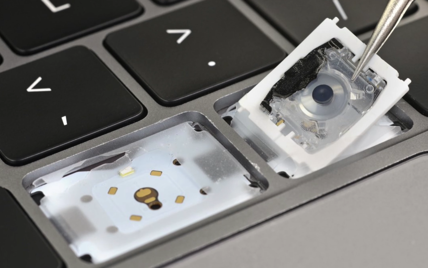 A teardown of the keys on the 5th Generation Keyboard (Source: iFixit)