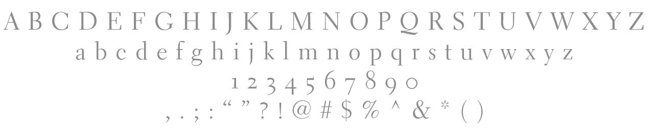 Primary Typeface /Electra