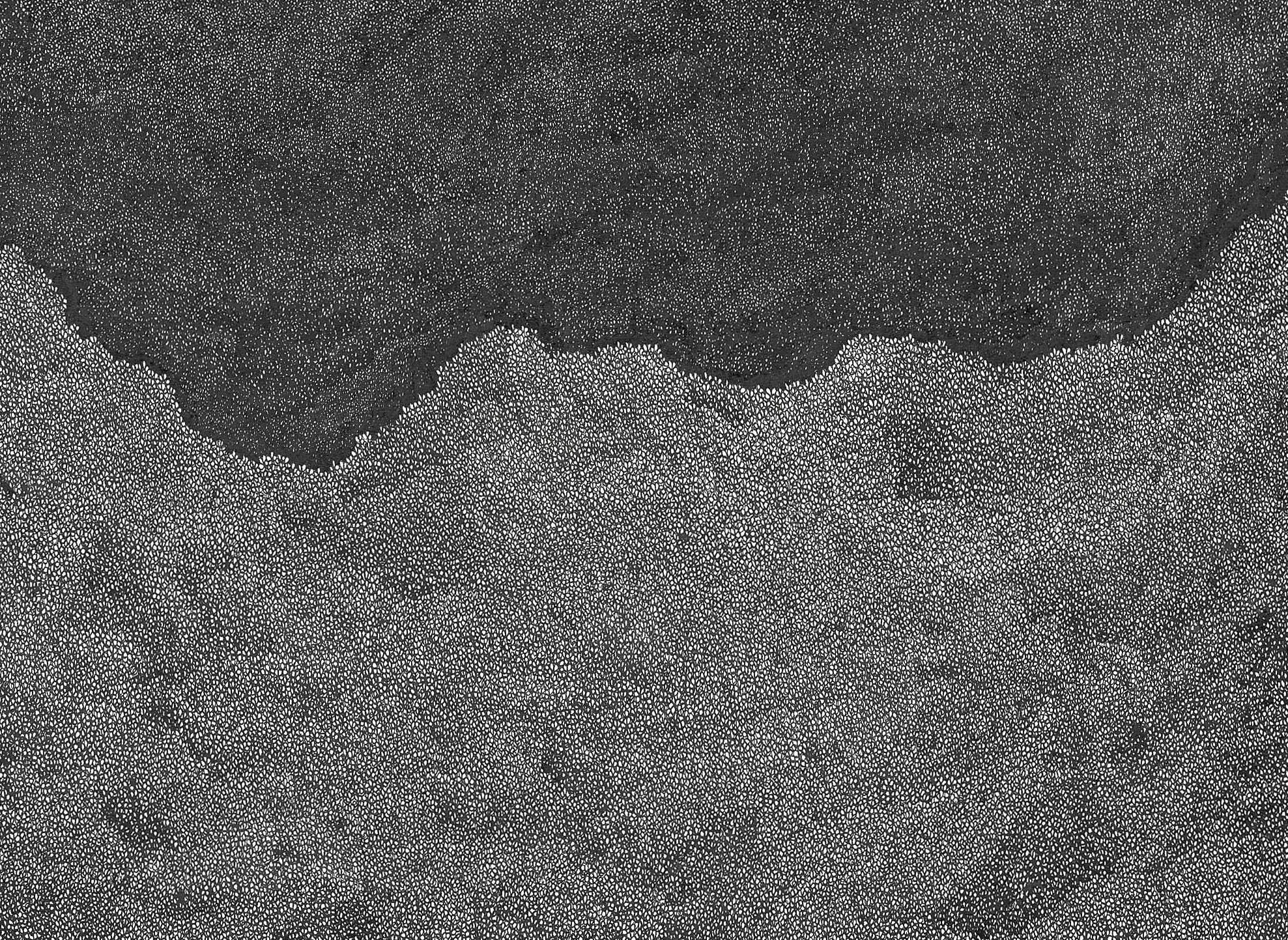 cutout 5.jpeg