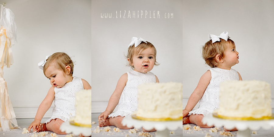 one year old girl cake smash photo session