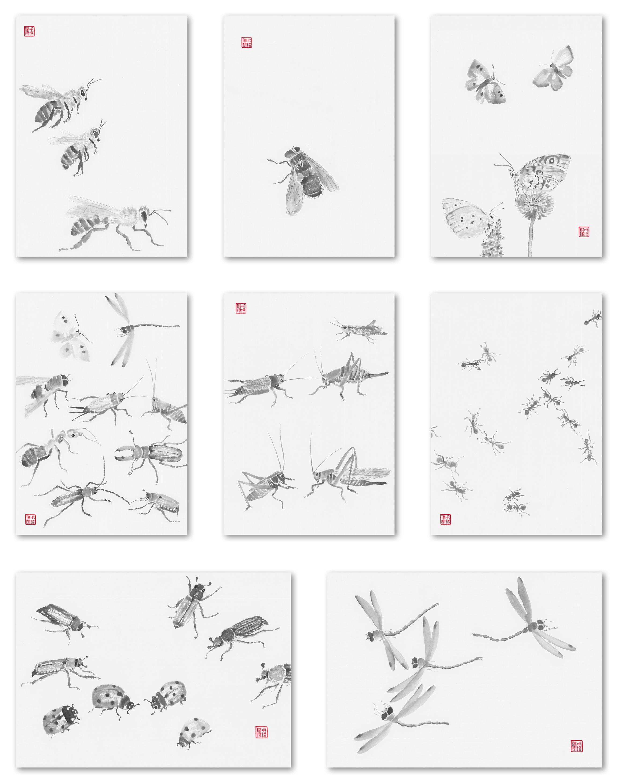 Insektenserie3.jpg