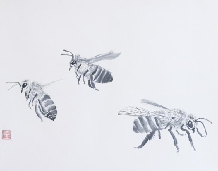 _Bienen.jpg