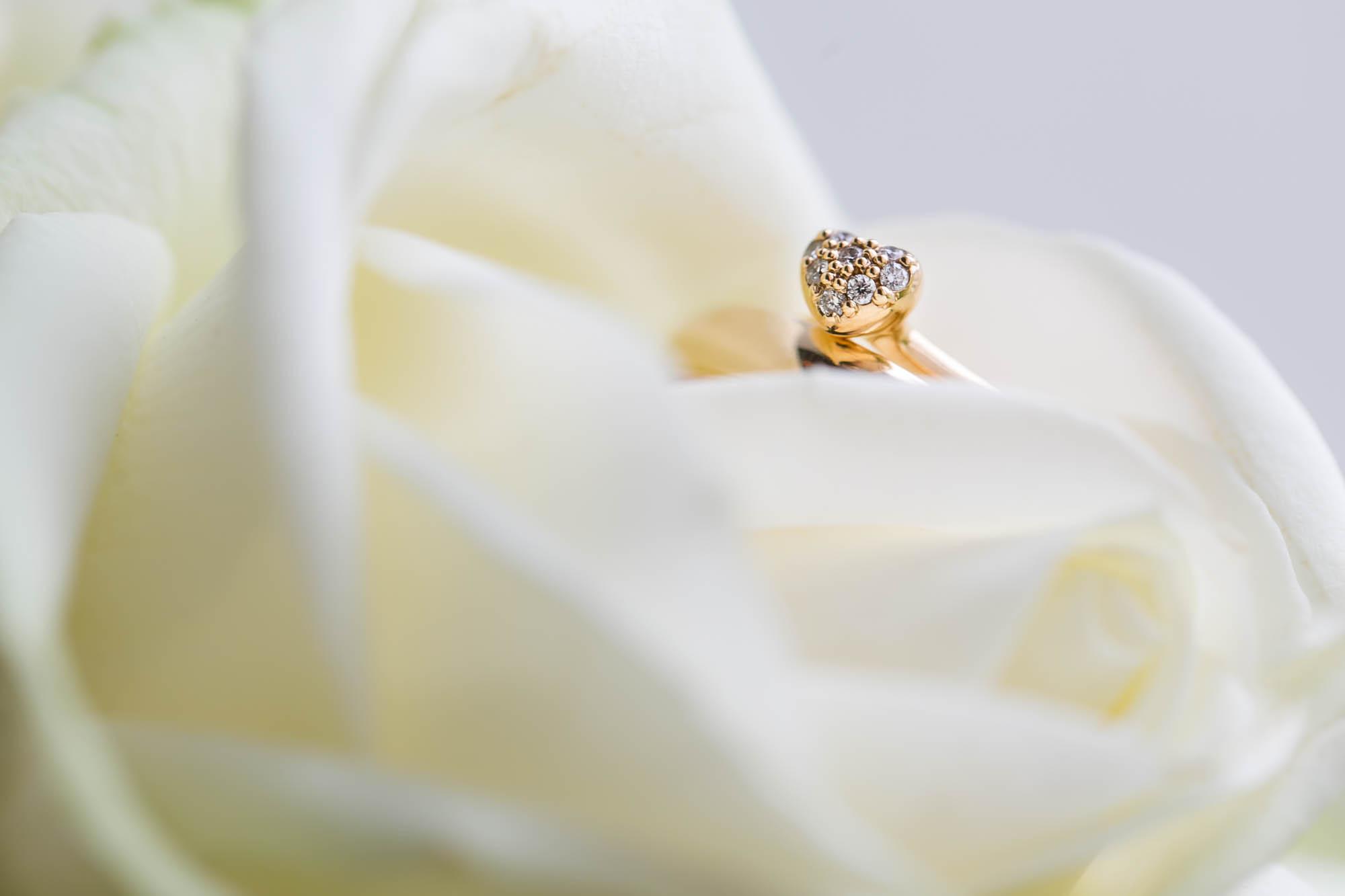 Vielsesringe fotograferet i rose