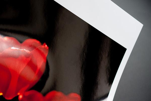 Print - Udprint af jeres billeder til egne rammer. Print med lang holdbarhed på kvalitetspapir