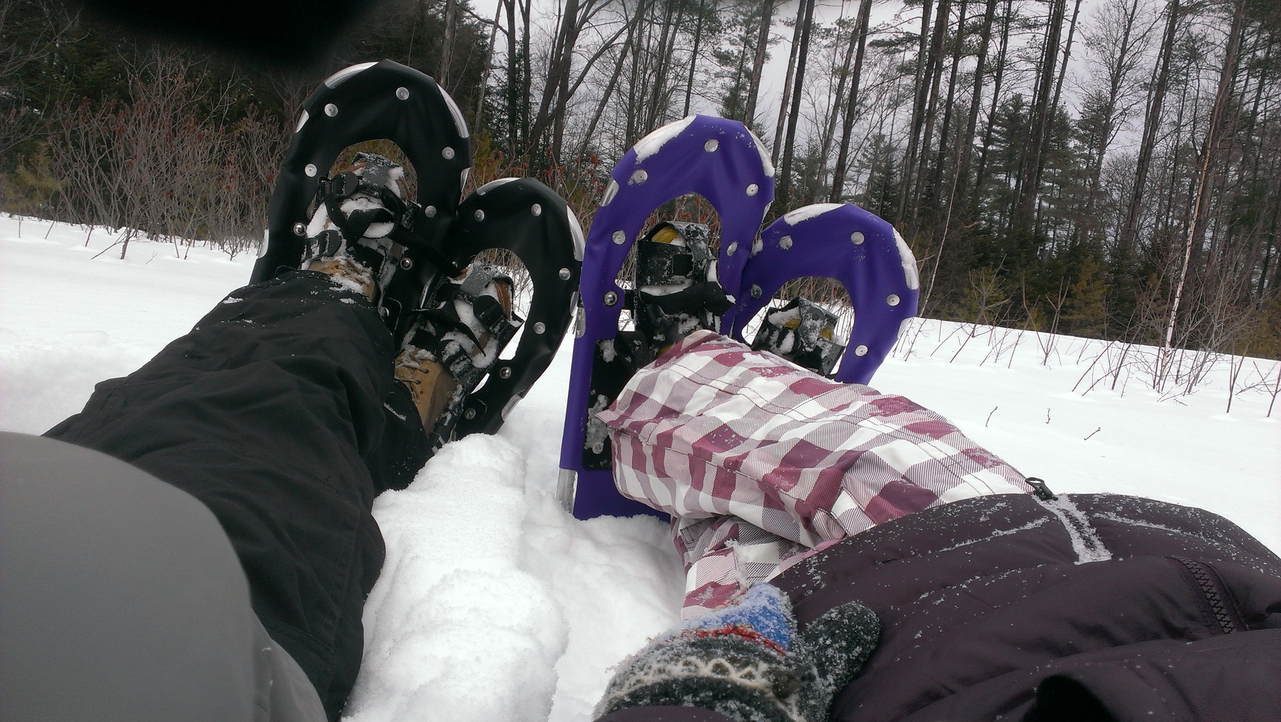 Resting snowshoes