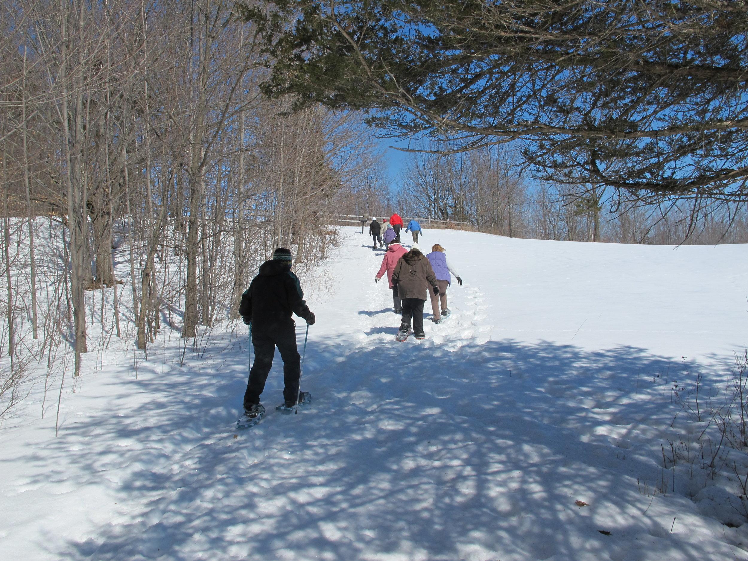 Landis Arboretum snowshoe hike