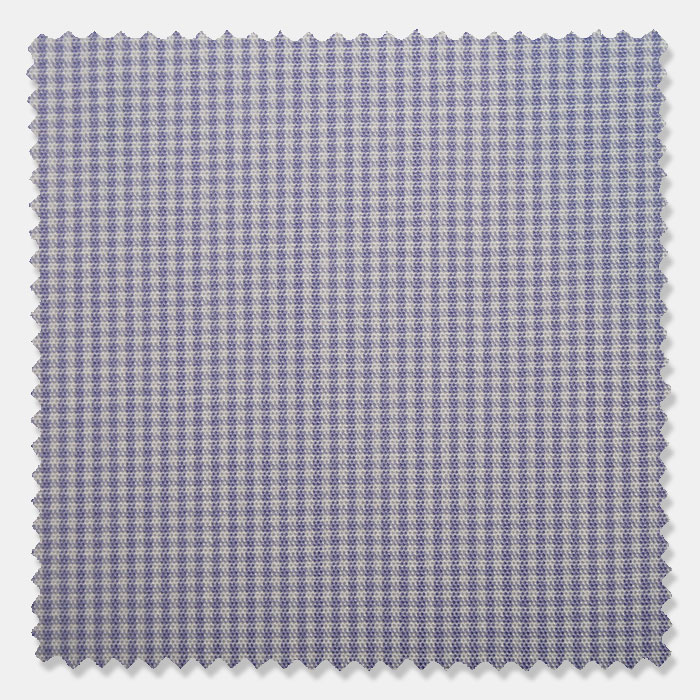 Dry and Fly Easy Iron: Visconte Gingham    S05LBC-P