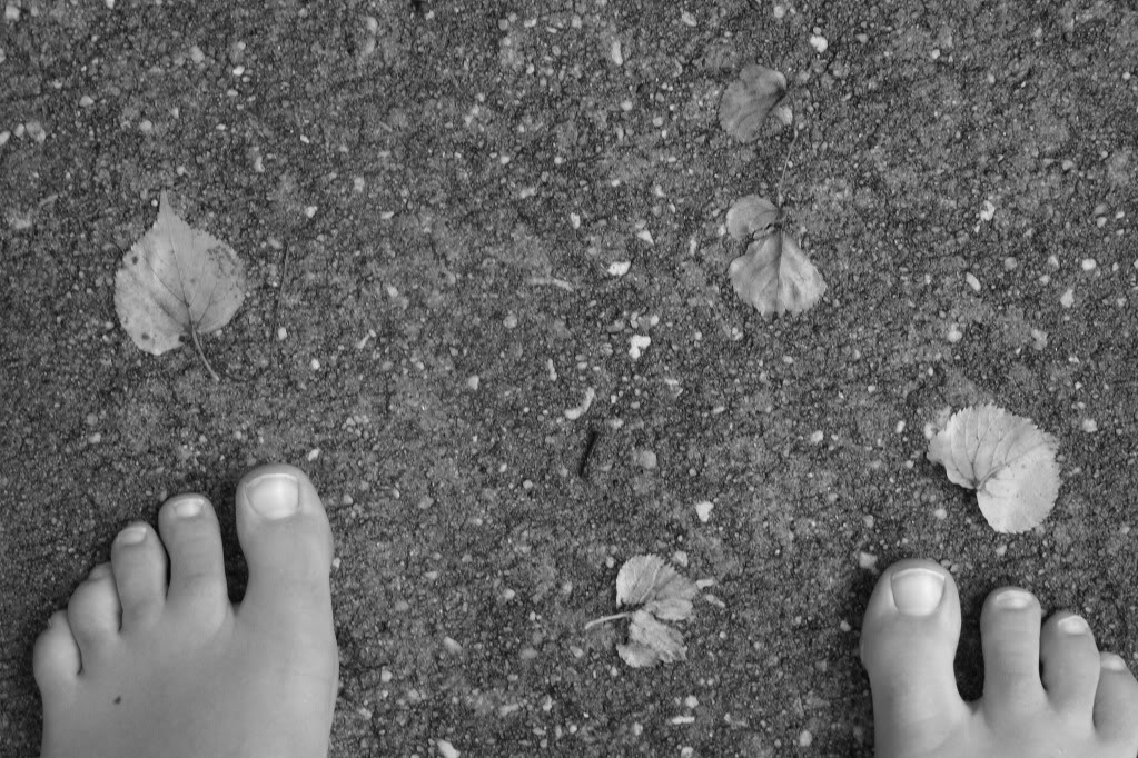 FeetandLeaves.jpg