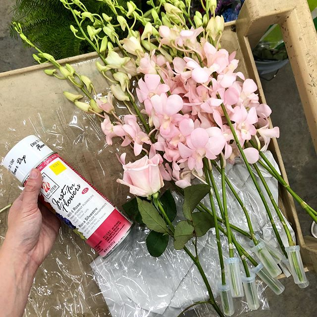 It's amazing what a little paint can do! We used @dmcolor's Just for Flowers in Wild Rose to transform these white dendrobium orchids pink to match a sweet escimo rose. 🤯👩🏻🎨✨ . . . #dmcolor #justforflowers #dendrobiumorchid #rose #spraypaint #wholesaleflowermarket