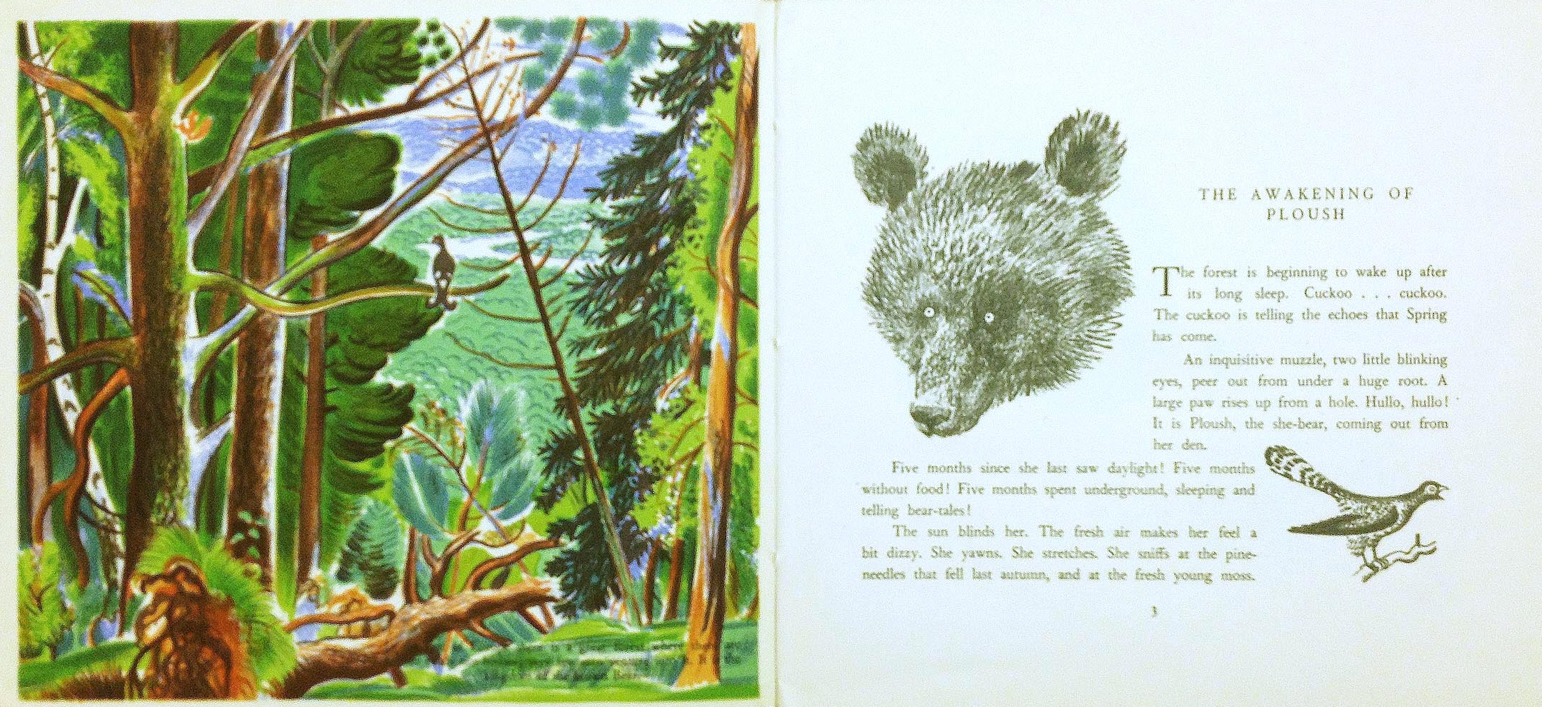 Interior pages from   Bourru, The Brown Bear