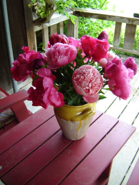 peonies on the porch.jpg