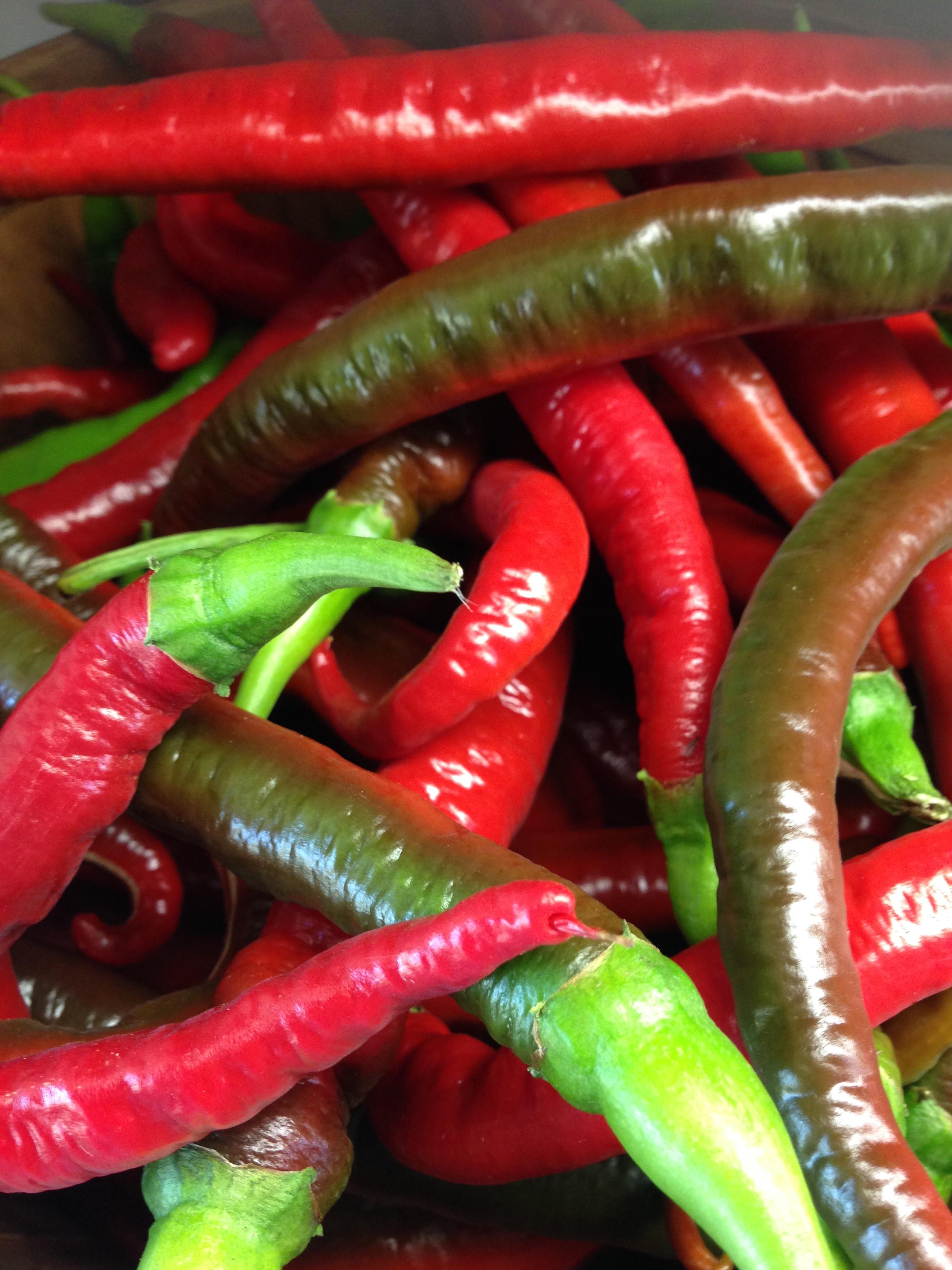 rd peppers.jpg