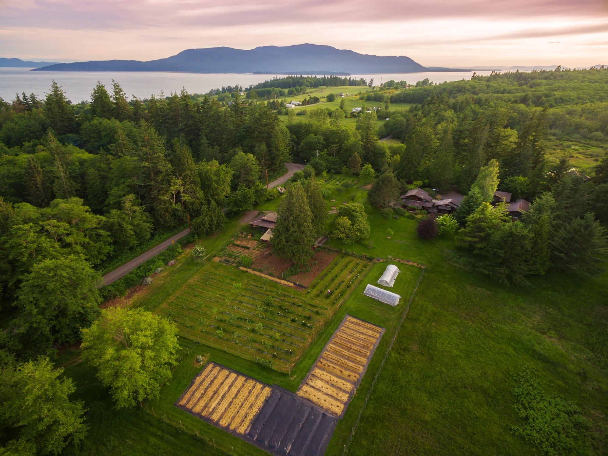 Farm 2017 Ed Lowe.jpg