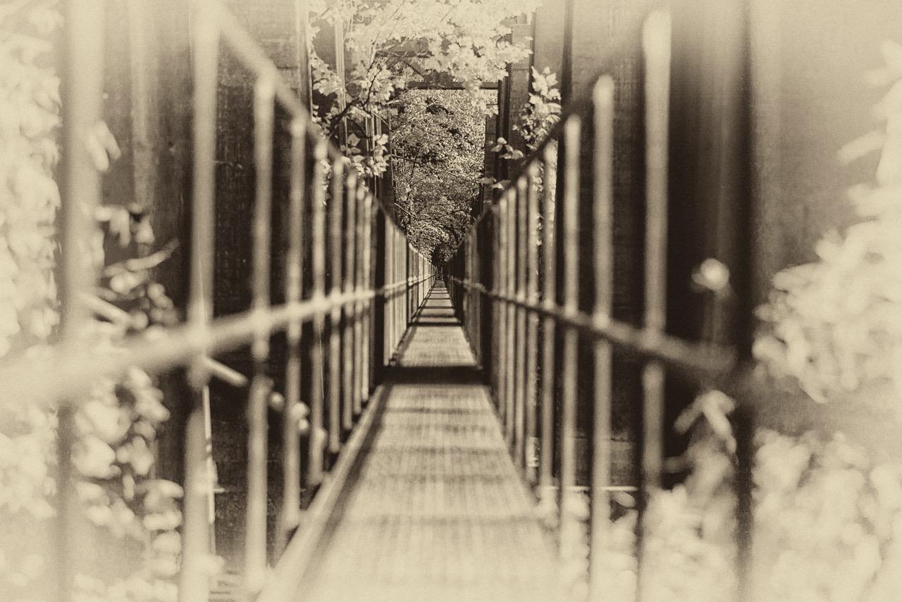 Bridge to Eternity.jpeg