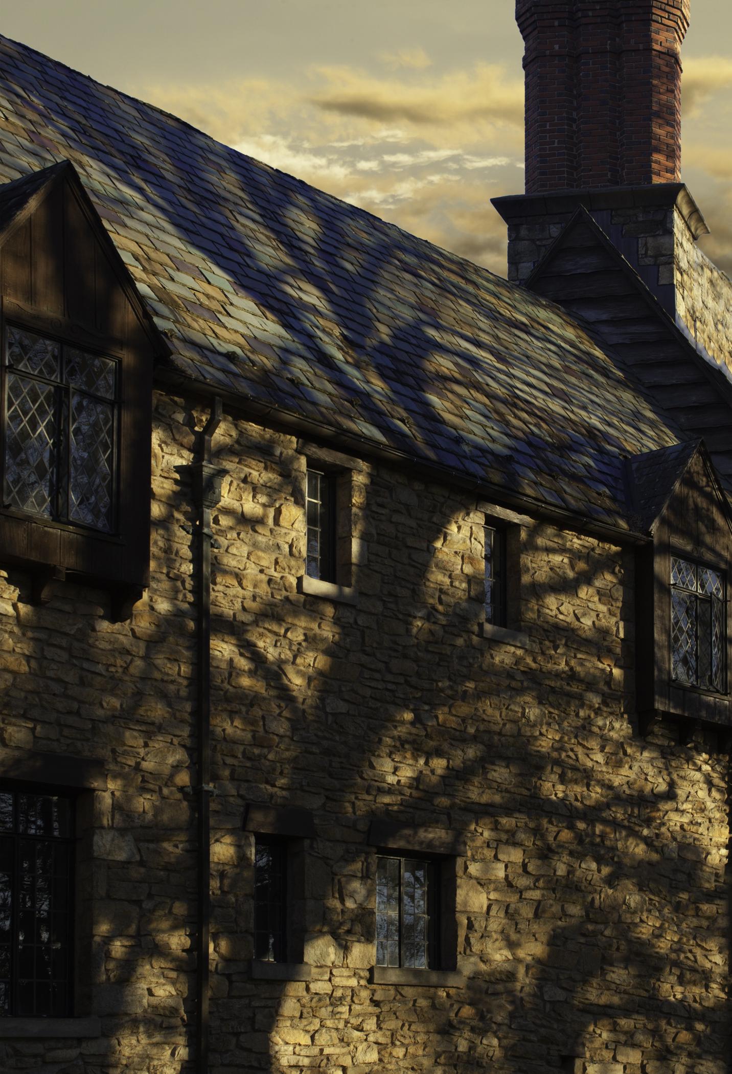 longlea shadows.jpg