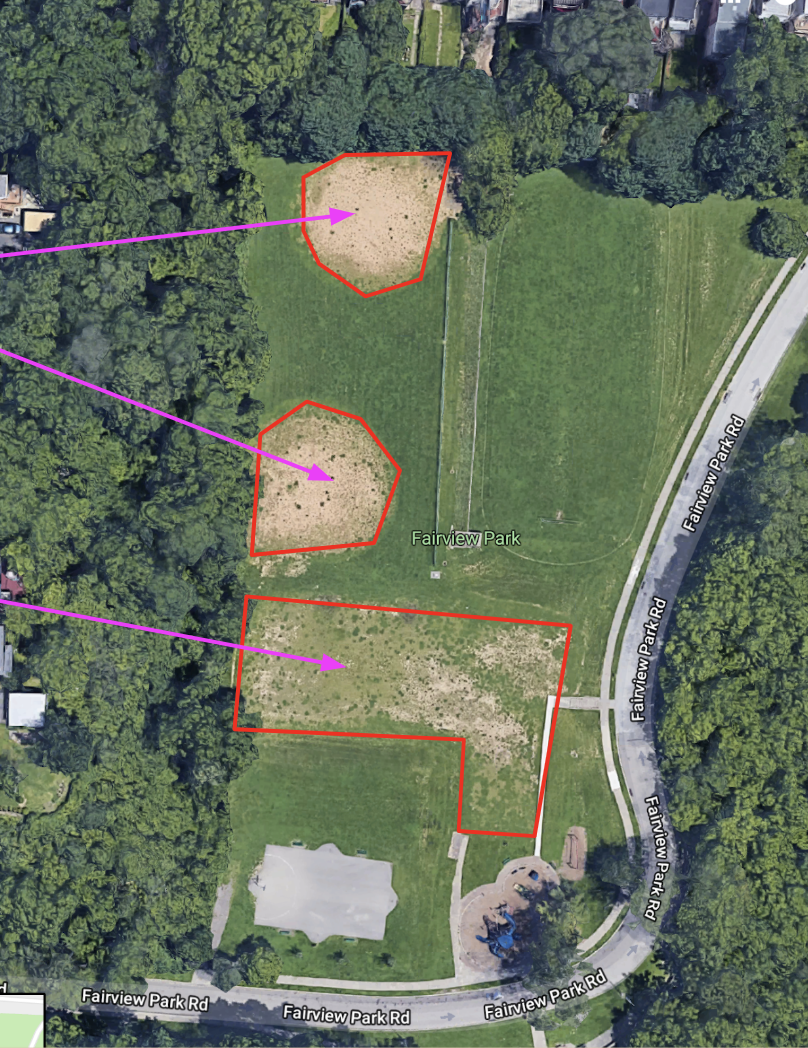 Red outlines and pink arrows denote the problem areas for establishing any new growth.  Image from:  caigsonline.hamilton-co.org