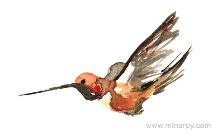 MinaRoy_Paintedbird_RGB_007.png