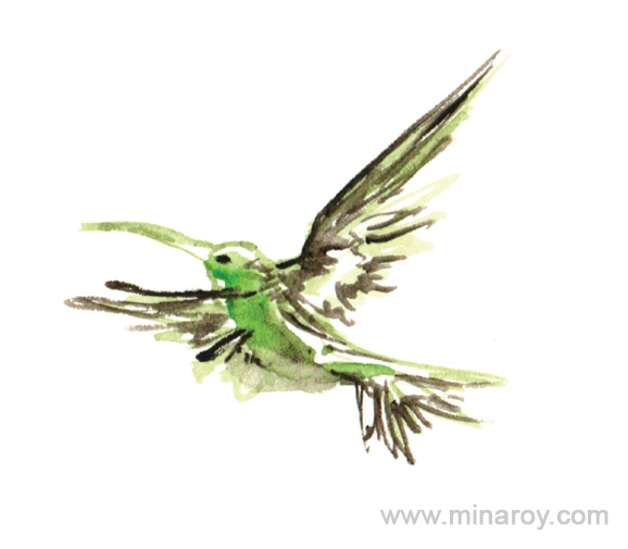 MinaRoy_Paintedbird_RGB_011.png