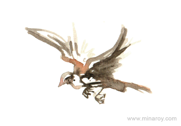 MinaRoy_Paintedbird_RGB_018.png