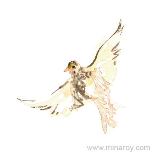 MinaRoy_Paintedbird_RGB_022.png