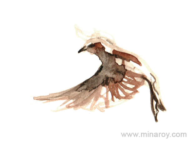 MinaRoy_Paintedbird_RGB_024.png