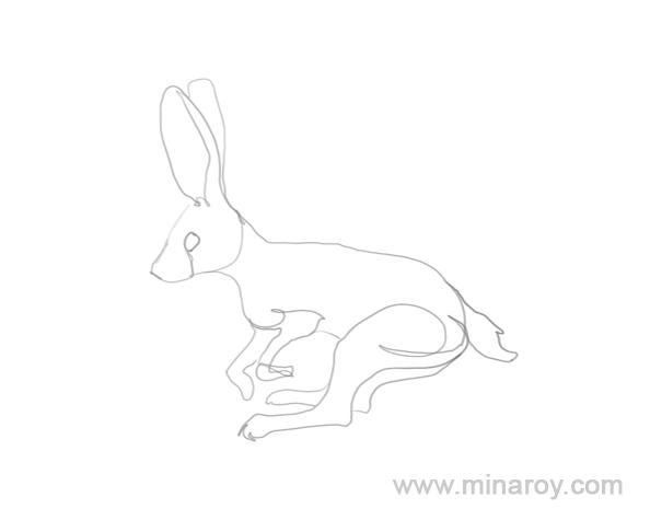 MinaRoy_rabbit_004.png